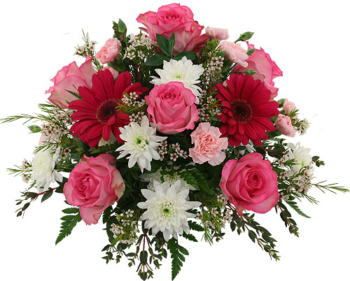Anniversary Flowers Related Keywords Suggestions Anniversary