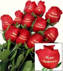 anniversary printed roses